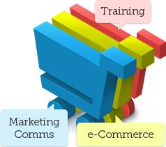 Marketing & Comms, e-commerce, Training